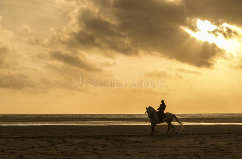 Download Man riding horse stock image. Image of colorful, beautiful - 32226997