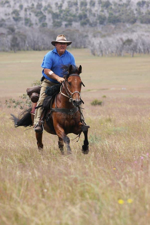 Man Riding Horse At Speed Royalty Free Stock Photo
