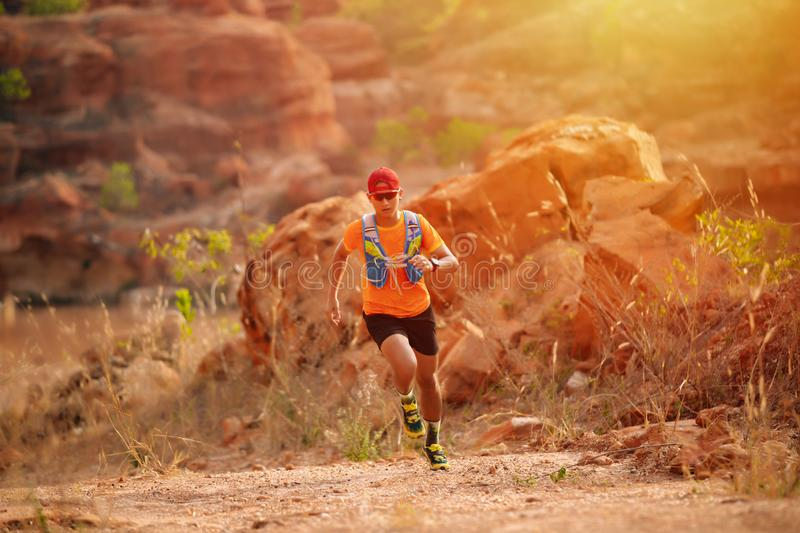 A man Runner of Trail and athlete`s feet wearing sports shoes for trail running in the forest.  royalty free stock images