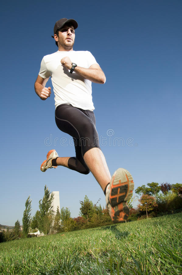 Download Man running stock image. Image of training, workout, shoes - 16673105