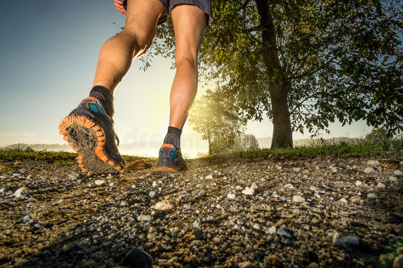 Man running in the country royalty free stock photography