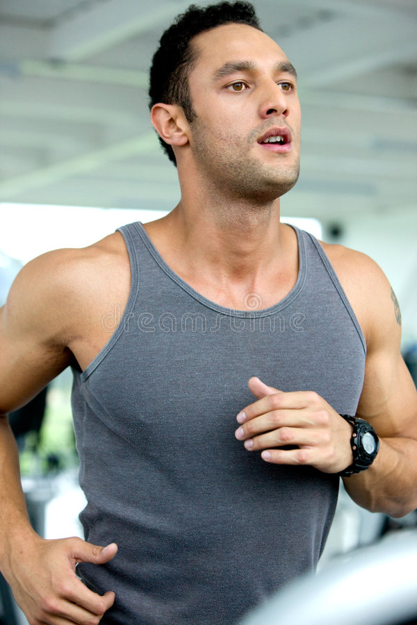 Download Man running at the gym stock image. Image of person, exercise - 6997531