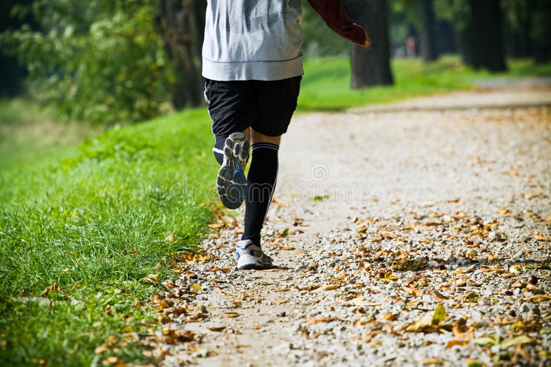 Download Man Running Outdoors In Park Stock Photo - Image of motion, exercising: 16479664