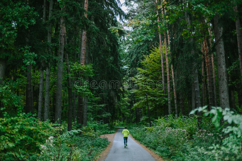 Man running on path in old green forest. stock photography