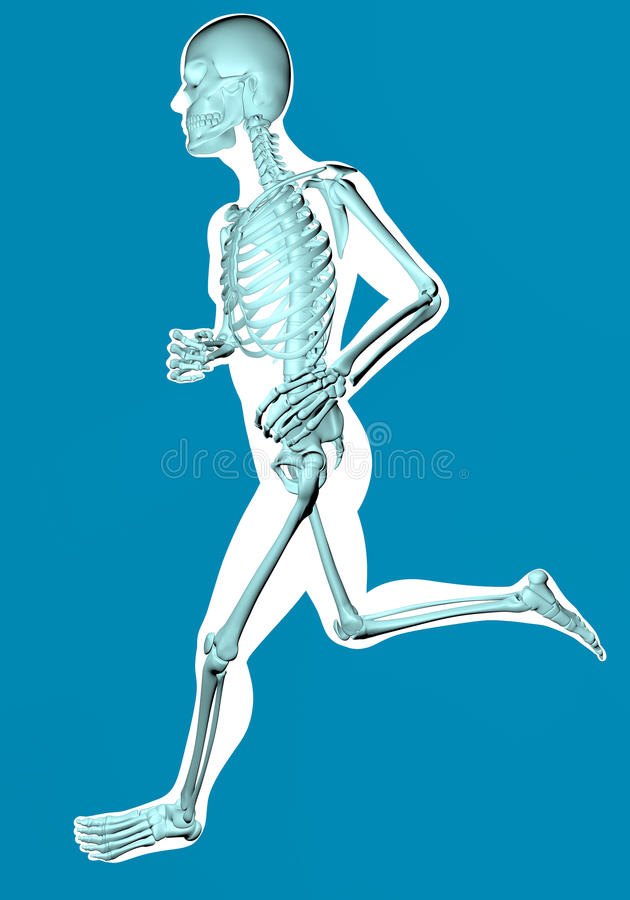Man running seen on x-ray. Running man seen by x-ray on blue background vector illustration