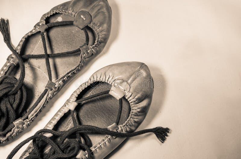 Man& x27; s和woman& x27; s用皮革包盖在乌贼属被突出的垂直的图象的跳舞鞋子 免版税库存照片
