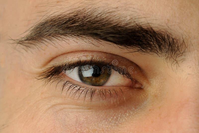 Man's eye royalty free stock image