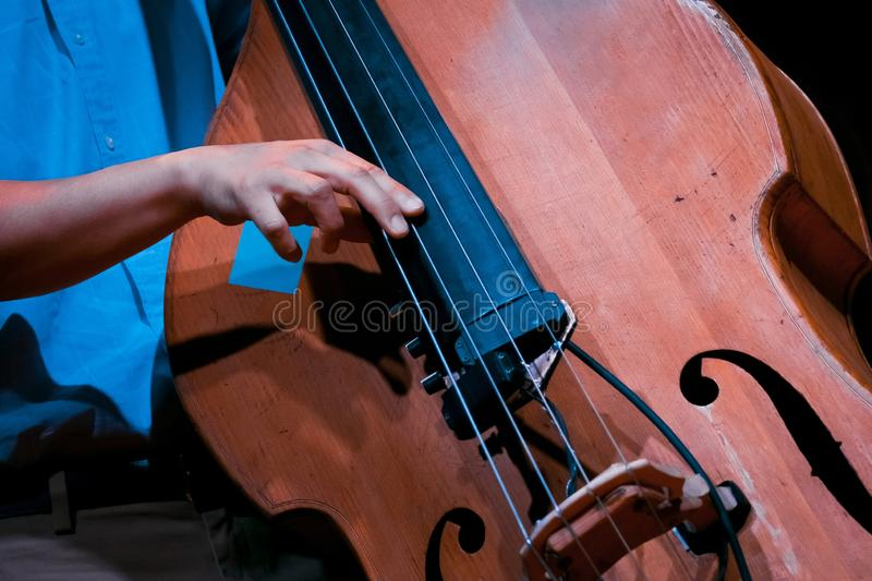 Man`s fingers play strings on his double bass during live jazz performance stock photo