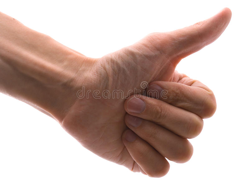 Download Man's hand stock photo. Image of palm, hands, fives, female - 11334346