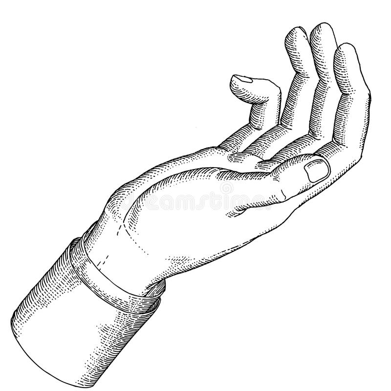 A man's hand stock image