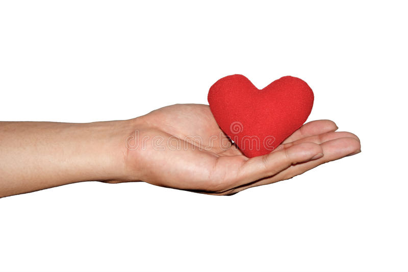 Man's hand hold red heart on isolate white background royalty free stock image