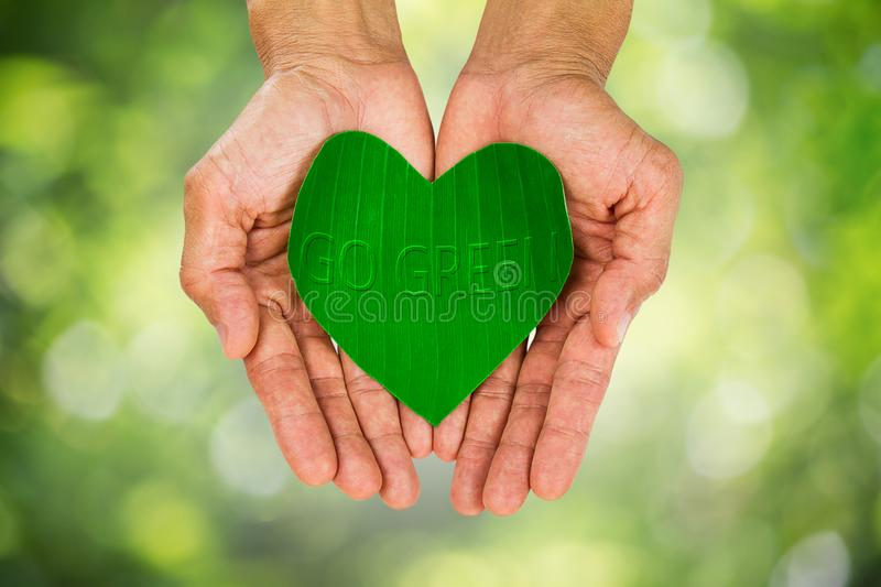 Man& x27;s hand holding heart shaped green leaf on blurred bokeh background royalty free stock photography