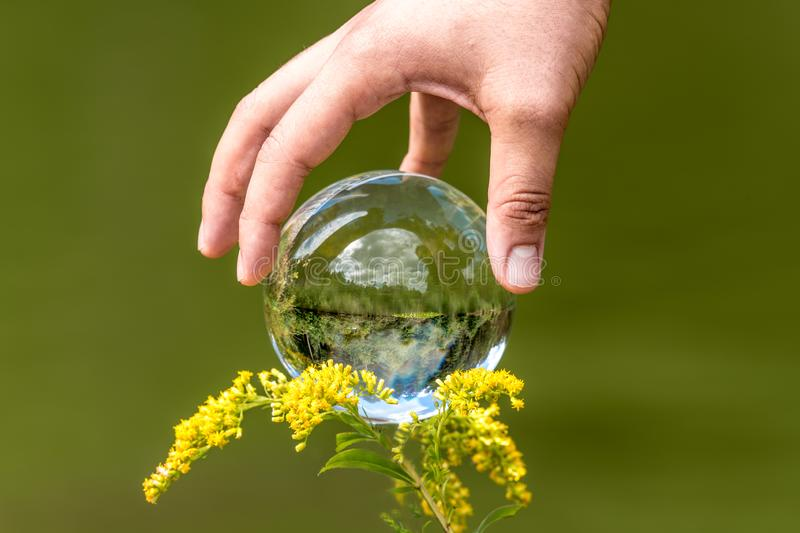 A man`s hand reaches for a glass globe with a mirrored lake, trees and sky against a green background royalty free stock images