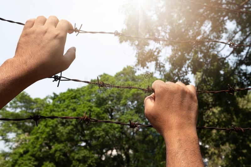 A man`s hand seized barbed wire tightly and sunlight. Escape for freedom stock images