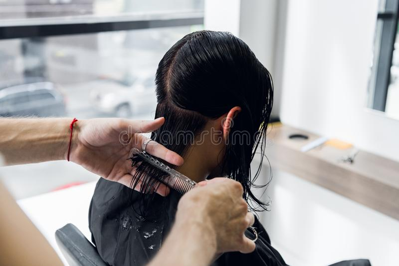 Man`s hands cut and comb female dark brown hair in a beauty salon with mirrors stock image