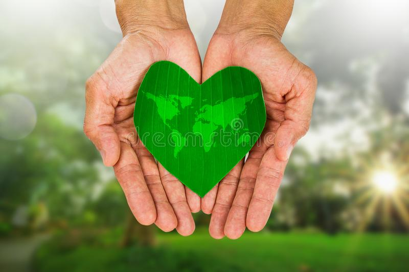Man& x27;s hands holding heart shaped green leaf with world map on blurred nature background stock photos