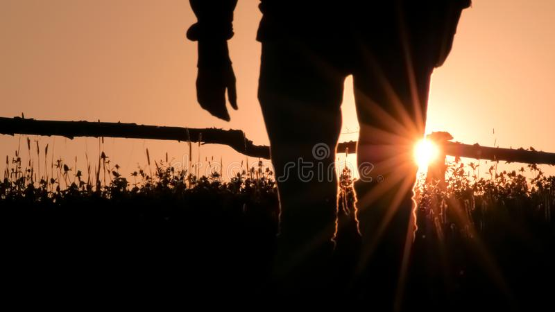 Man`s silhouette on sunrise, sunset background. Green tourism, eco living in the village on backlight. Rural scene stock photos