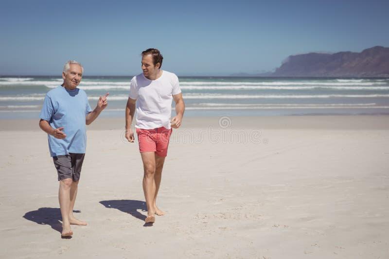 Man samtal med hans fader, medan gå på stranden royaltyfri fotografi