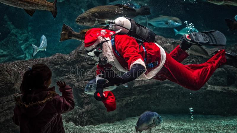 Man in Santa Claus Costume With Diving Gear Inside Aquarium royalty free stock photo