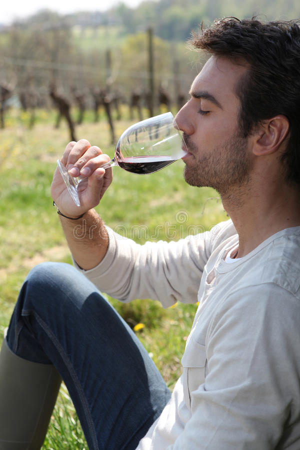 Download Man sat drinking red wine stock image. Image of elegance - 23791727
