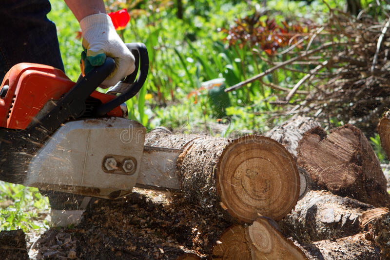 Man saws a log with a chainsaw stock photography