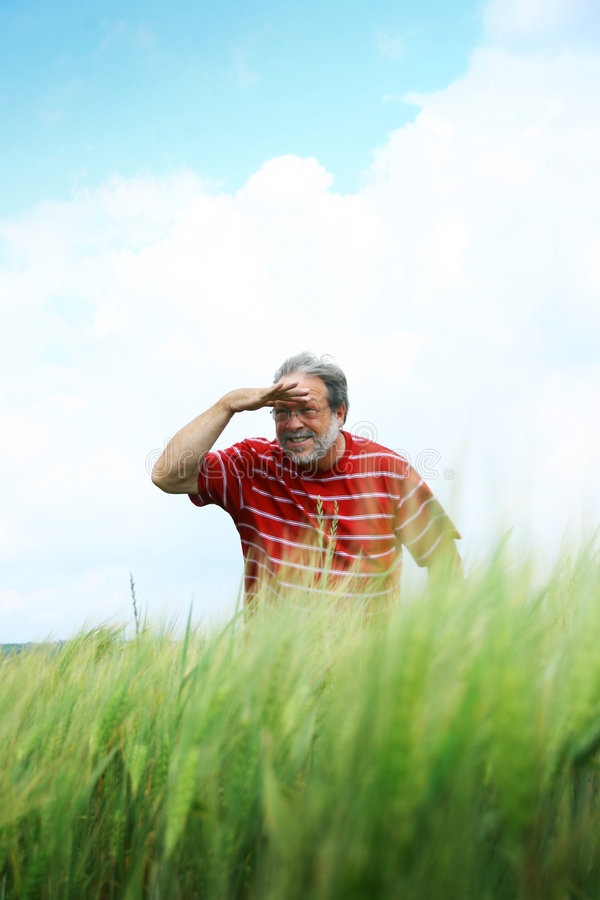Download Man searching in distance stock photo. Image of search - 5909116