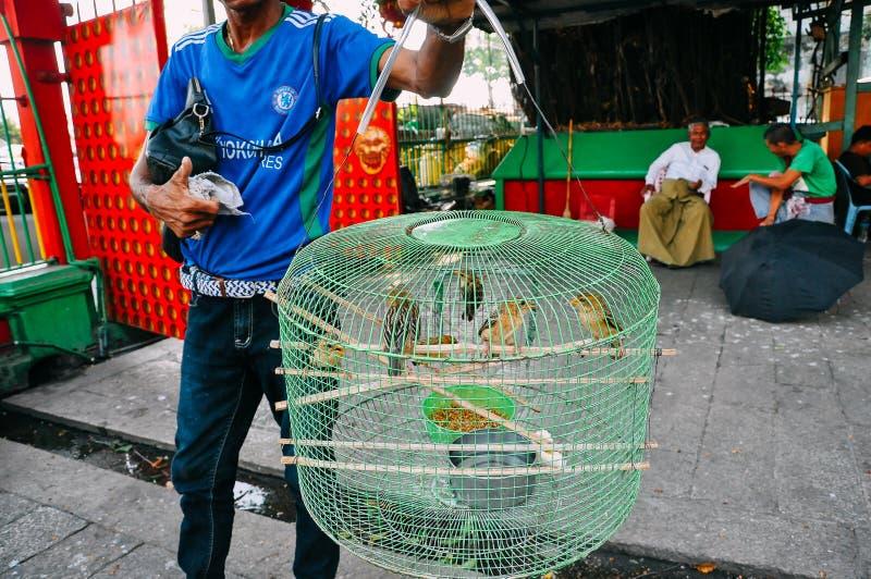 Man selling wild birds in Yangon. stock image