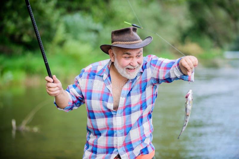 Man senior bearded fisherman. Fisherman fishing equipment. Fisherman alone stand in river water. Hobby sport activity royalty free stock photos