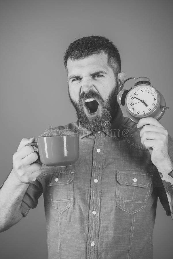 Man with serious emotion. Refreshment break and energy. Hipster with milk cup, time. guy yawn with mulled wine, clock on blue background. Red mug with alarm royalty free stock photo