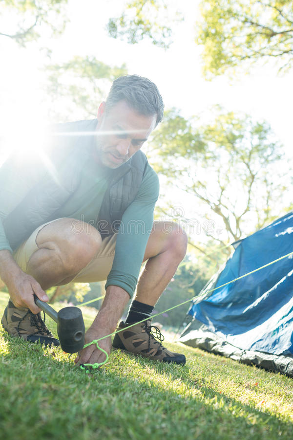 Man setting up the tent at campsite. On a sunny day stock photos