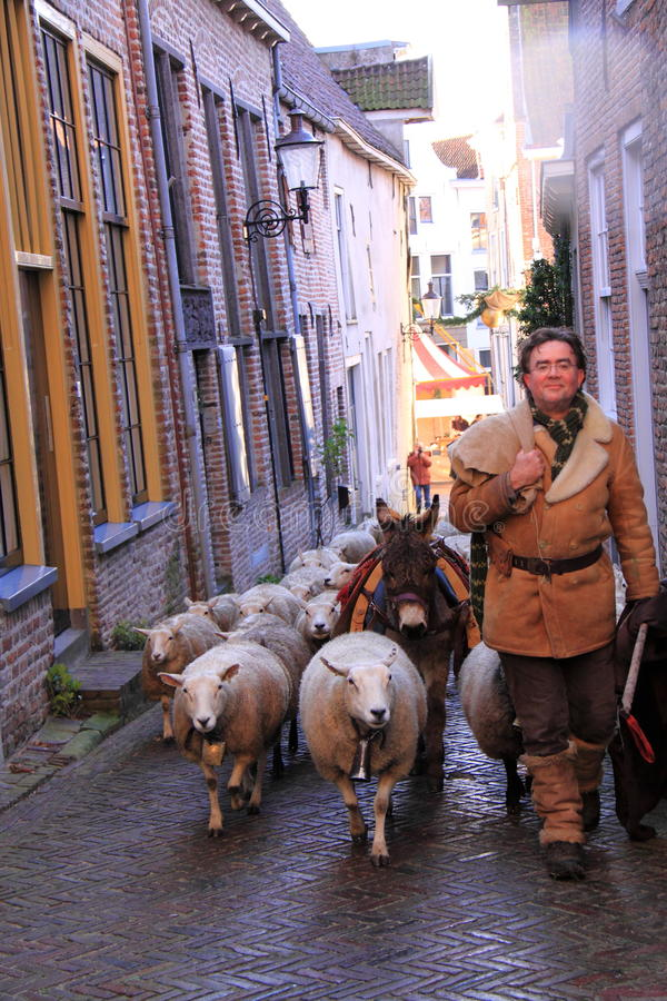Man and sheep in the street royalty free stock photos