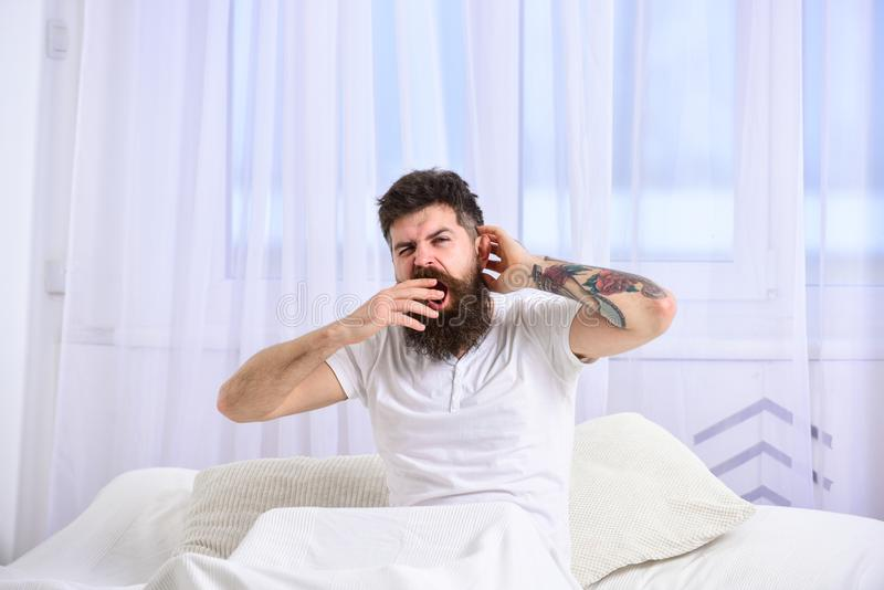 Man in shirt yawning while sit on bed, white curtain on background. Guy on sleepy tired face yawning. Sleepyhead concept. Macho with beard and mustache yawning royalty free stock photography
