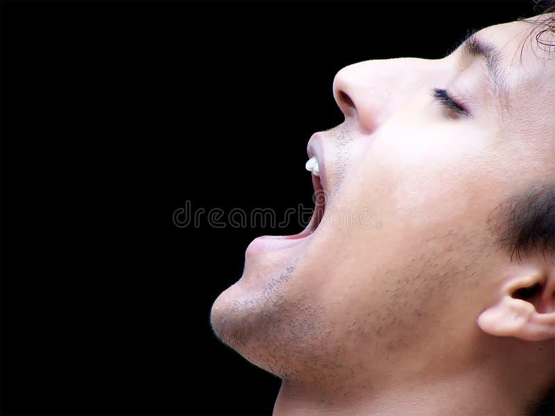 Man Shouting Profile Royalty Free Stock Photography