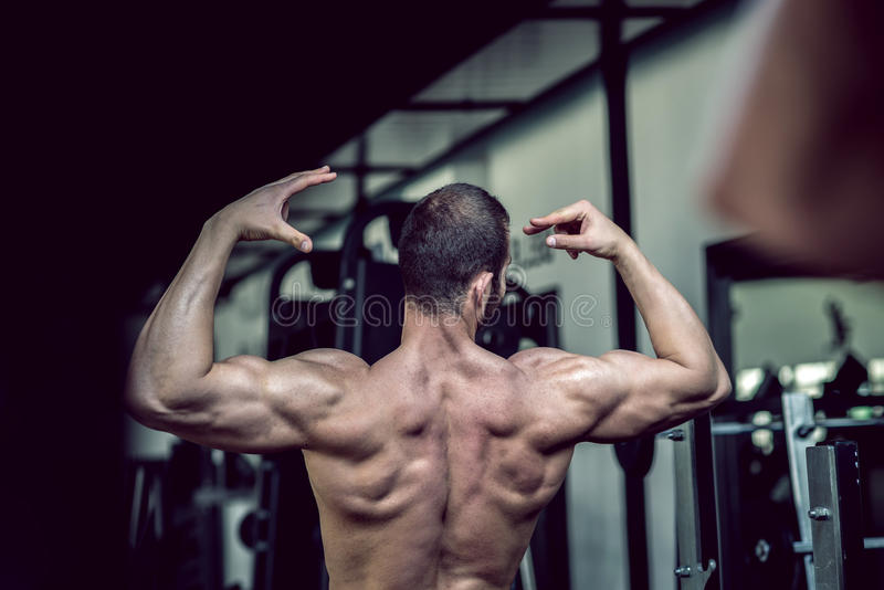 Man showing back in gym stock photos