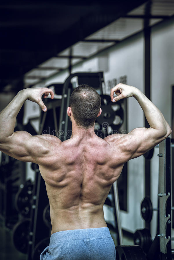 Man showing back in gym royalty free stock photo