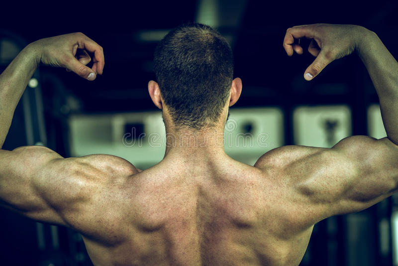 Man showing back in gym stock photo