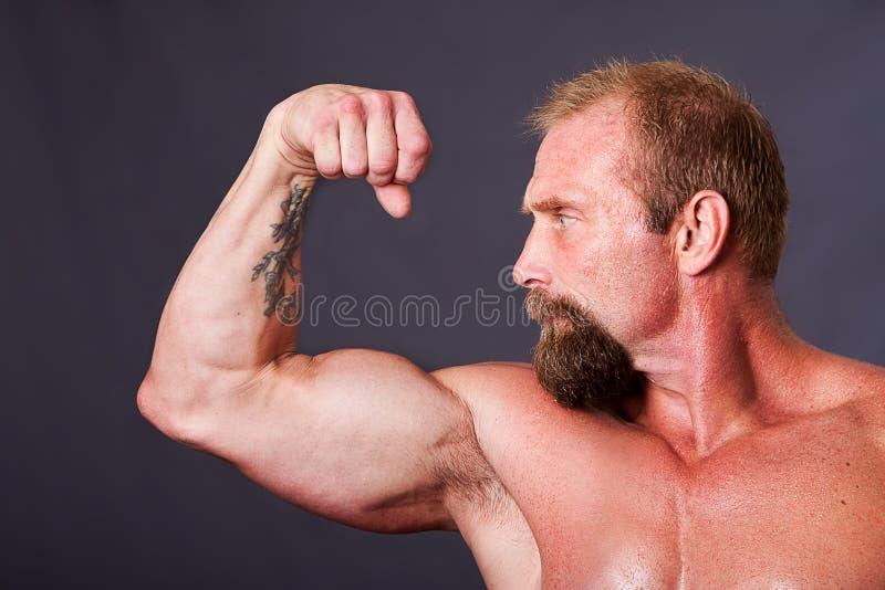 Man Showing Biceps Stock Photo