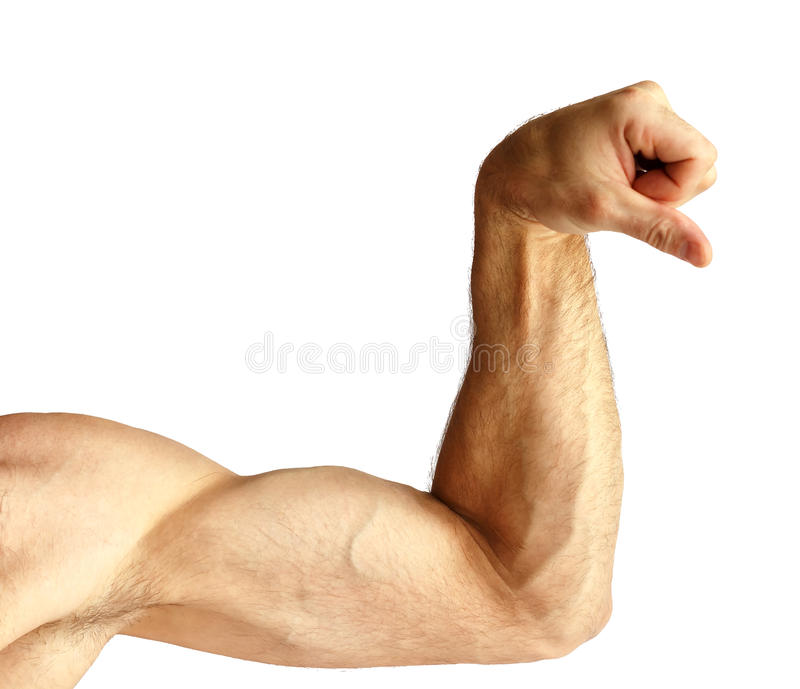 A man shows arm strength. stock images