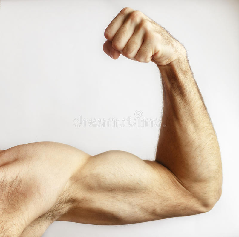 A man shows arm strength royalty free stock photography