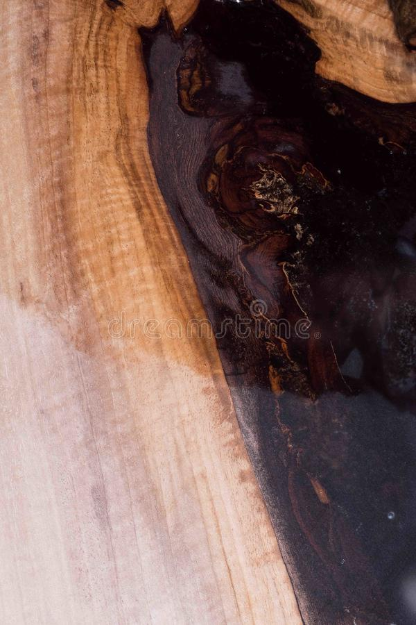 Man shows the difference wet tree and dry. black resin with stones inside. stock image
