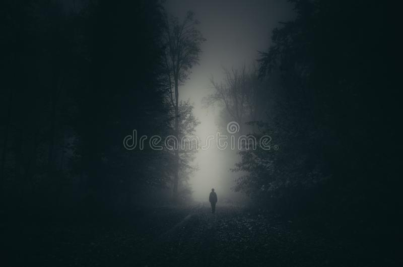 Man silhouette on path in haunted forest. Man walking on road in mysterious Haunted Halloween forest. Night in the woods. Mysterious forest background. Spooky stock photography