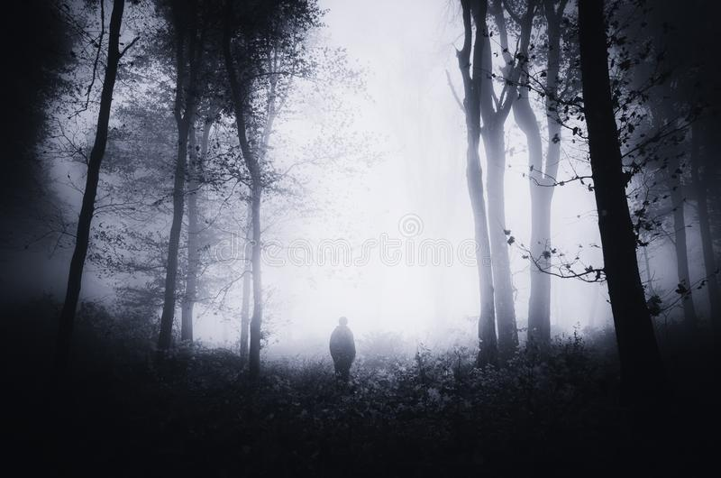 Man silhouette in scary dark haunted forest with fog royalty free stock photography