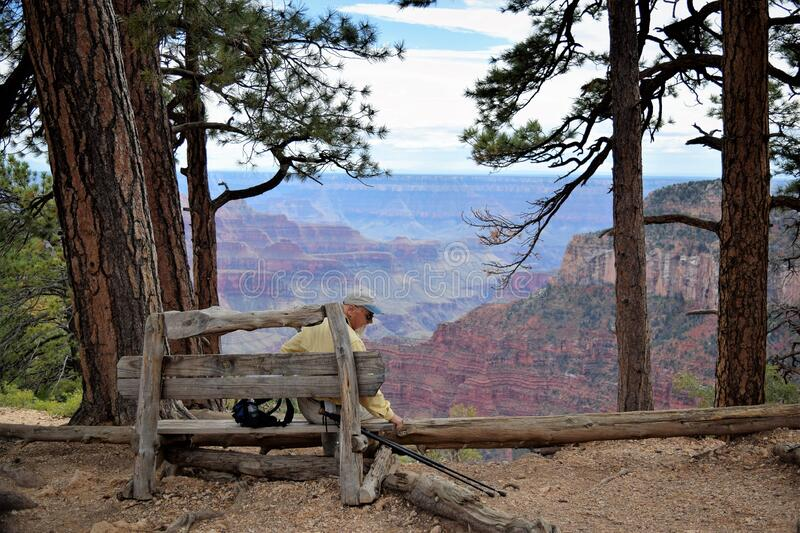 Man Sitting on Bench Overlooking Canyon stock photo