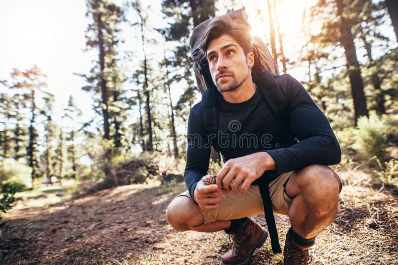 Man sitting on forest trail wearing a backpack. Hiker holding grass sitting on forest trail. Man exploring nature walking through the woods stock photo