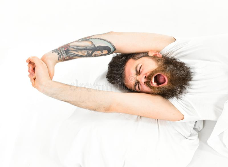 Man slept well, white background. Good morning concept. Man with sleepy yawning face stretching, wake up. Hipster with beard stretching arms, drowsy, sleepy royalty free stock image