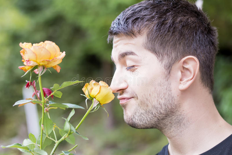Man smelling a rose. Young man smelling yellow rose outdoor stock photo