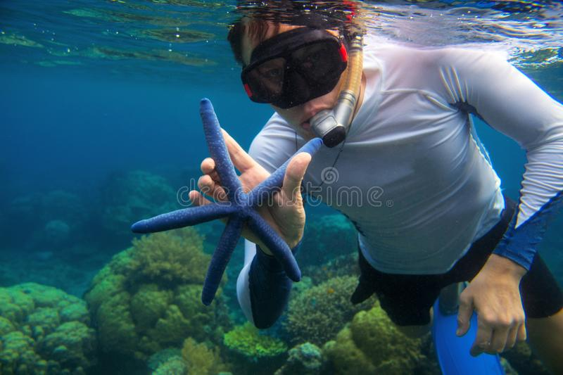 Man snorkeling in blue water with star fish. Snorkeling in coral reef. Snorkel holds blue starfish. royalty free stock image