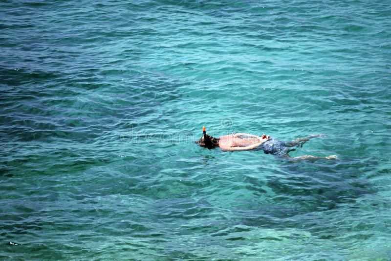 Download Man snorkeling in sea stock image. Image of blue, action - 2474785