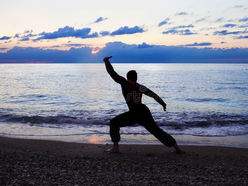 Man som öva Wushu på solnedgången Kontur av en man på solnedgång royaltyfri fotografi