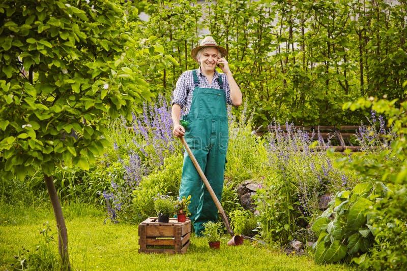 Man som arbeta i trädgården mobiltelefonblommor arkivfoto